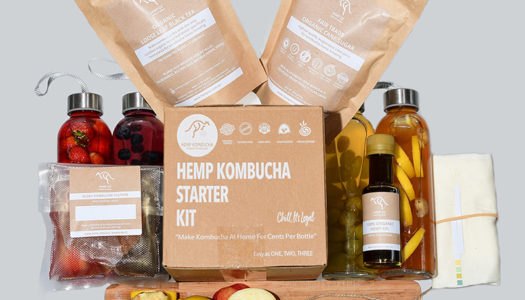 How to make Kombucha with the Hemp Oz Kombucha Kit